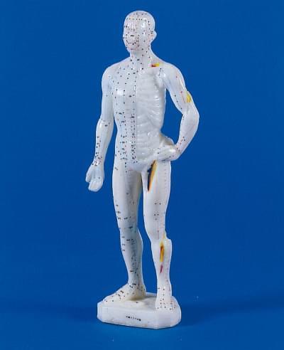 Mužská figurína pro akupunkturu, 26 cm