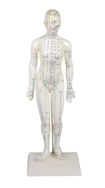 Ženská figurína pro akupunkturu
