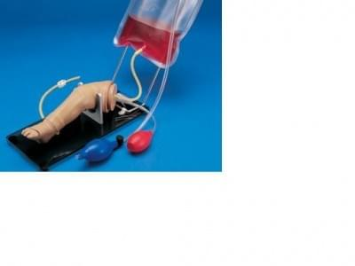 S409 - Dolní končetina novorozence pro intraoseální infuzi a injekce