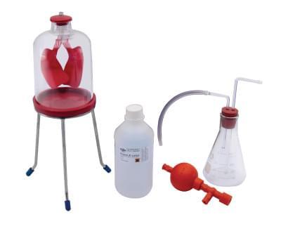 7017 - Sada pro pokusy s dýcháním