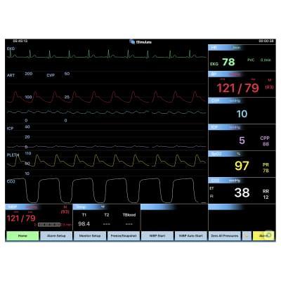 8000969 - Simulátor obrazovky pacientského monitoru CARESCAPE™ B40 pro REALITi360