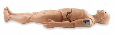 S315.600.250.PK1.L - HAL® Trenažér dospělého KPR+D pro nácvik KPR se 4 EKG body + OMNI2