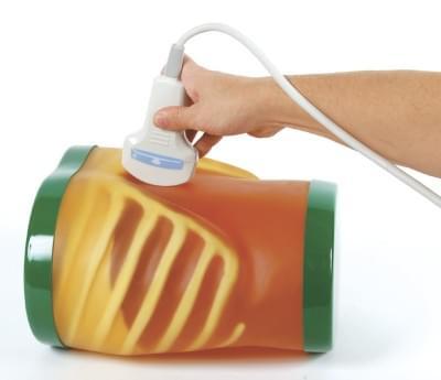 """US-1B - Výukový model """"ABDFAN"""" pro vyšetření břicha ultrazvukem II"""