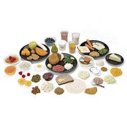 Velká sada replik potravin