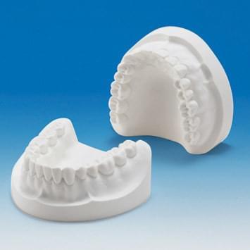 Sádrový model čelistí (32 zubů) PRO2001-UL-PL-32