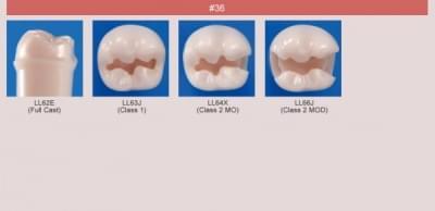 Model zubu pro přípravu pilíře můstku a čištění zubu před výplní (zub č. 36)