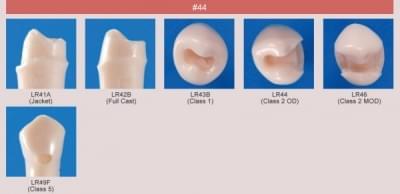 Model zubu pro přípravu pilíře můstku a čištění zubu před výplní (zub č. 44)