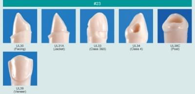 Model zubu pro přípravu pilíře můstku a čištění zubu před výplní (zub č. 23)