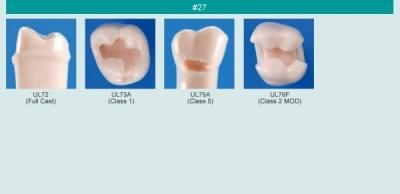 Model zubu pro přípravu pilíře můstku a čištění zubu před výplní (zub č. 27)