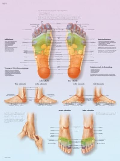 VR1810L - Masážní zóny na nohou