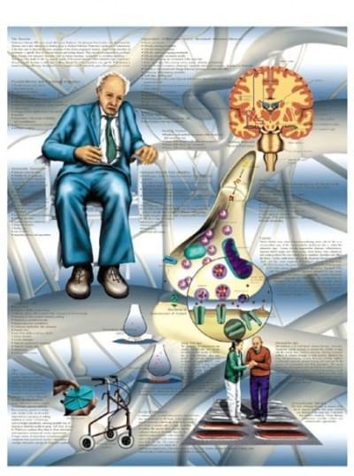 VR1629L - Parkinsonova choroba