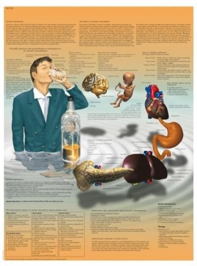 VR1792L - Alkoholová závislost