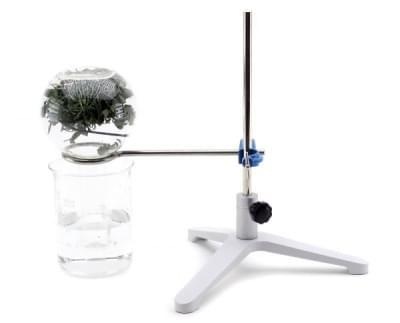 5661 – Sada pro ukázku dýchání rostlin