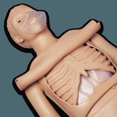 S310 - Simon BLS pro výuku CPR