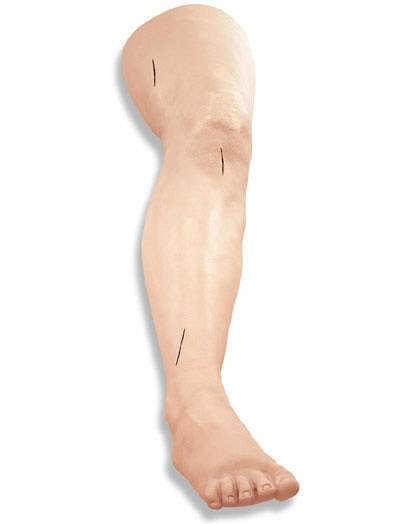 LF01034 - Noha pro nácvik šití
