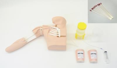 Simulátor pro nácvik obvodového zavádění centrálního žilního katétru vedeného ultrazvukem