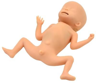 MW33 - Simulátor péče o dítě s extrémně nízkou porodní hmotností