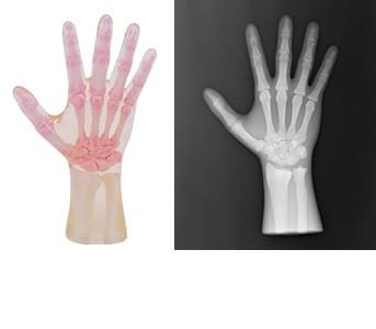 41926-030 - Pravá ruka (průhledná)