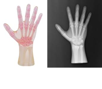 41926-020 - Pravá ruka (neprůhledná)